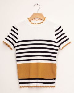 Stripe Scallop Crew Neck Sweater - Mustard