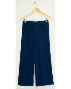 Pleated Wide Leg Trousers - Blue